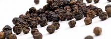 Black pepper may yeild a revolutionary vitiligo treatment